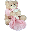 Image of brown Teddy with pink comforter
